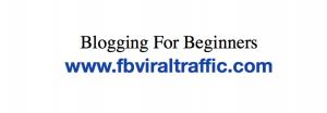 Blogging For Beginners 2021 fb viral traffic