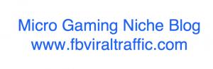 Micro Gaming Niche Blog